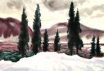 Без названия (Пейзаж. Зима. Ели на речном берегу)